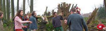 2007-02-19-knotwilgkamp-sint-pieters-leeuw-2-340.jpg
