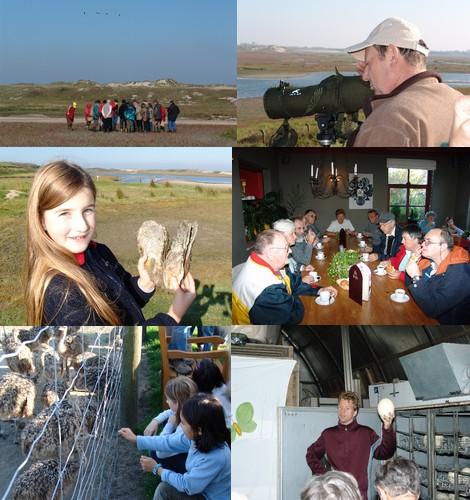 2007-10-06-zwin.jpg