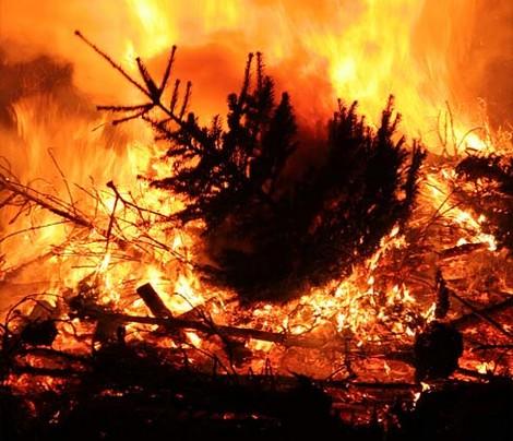 2008-01-10-kerstboomverbranding.jpg