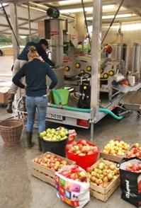 2010-08-02-fruitpers