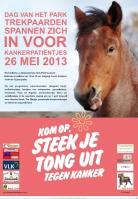 2013-05-26-affiche_dag-van-het-park_trekpaarden_sint-Pieters-Leeuw