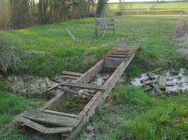 2013-12-27-Natuurpunt_Leeuwse-natuurvrienden_03-archief