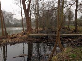2014-03-14-Groen-Ruisbroek_03