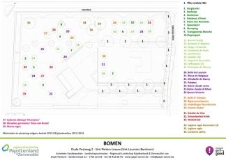 2014-04-16-Oude-postweg-2_bomenplan
