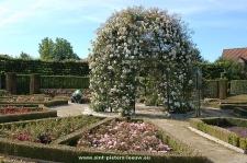 2014-06-06-Rozentuin_Coloma_Sint-Pieters-Leeuw_04