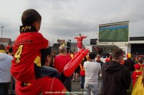 2014-06-17-wk-sfeer-Leeuw (11)