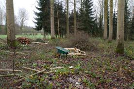 2015-12-25-zobbroekbeekvallei-Lindeproject-2