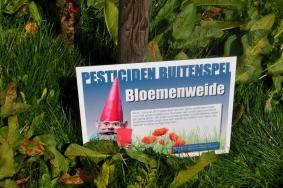 2017-04-20-groenonderhoud-zonder-pesticiden_02