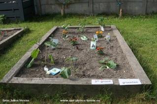 2017-05-17-jan-Ruusbroec-schooltuin_06
