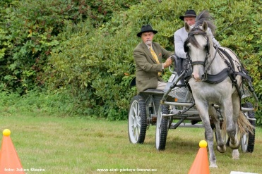 2017-07-29-dressuurwedstrijd-Vlezenbeek_24