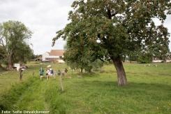 2018-06-17-wandeling_Vleze_Sobbroekbeek_Vogelzangbeek_02