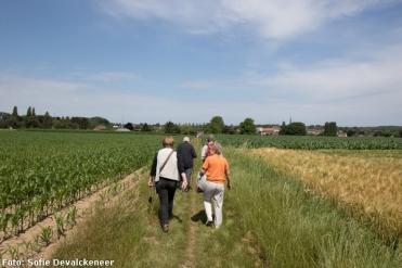 2018-06-17-wandeling_Vleze_Sobbroekbeek_Vogelzangbeek_09
