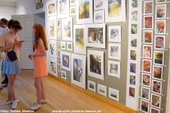 2018-06-29-kunst- en verkoopmarkt (4)