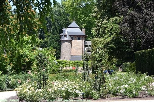 2018-07-01-Rozentuin_Sint-Pieters-Leeuw (17)