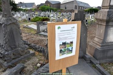 2018-07-04-aankondiging_ingroenen-begraafplaats_Ruisbroek_03