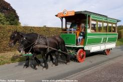 2018-09-30-trekpaardendag-Coloma (28)