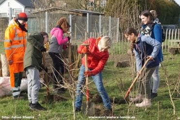2019-02-13-KINDERRAAD_sINT-pIETERS-lEEUW_PLANT-BOMEN (4)