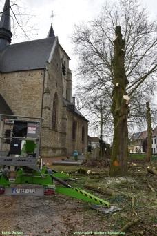 2019-03-26-rooien-bomen-aan-kerk (2)