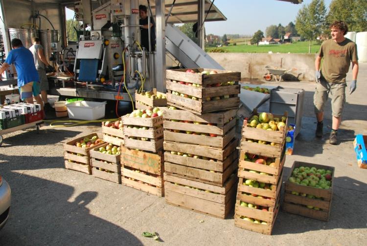 Foto fruitpers2