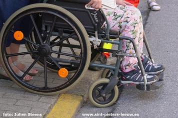 2019-09-14-rolstoelwandeling_Vlezenbeek (44)
