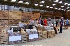 2019-09-16-dagvandelandbouw_hoeve-Lemaire (3)