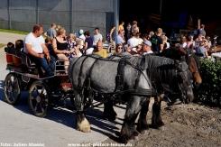 2019-09-16-dagvandelandbouw_hoeve-Lemaire (37)