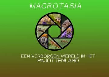 2019-10-24-Macrotasia_04