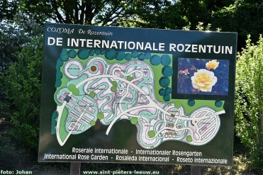 2020-05-30-Internationale-Rozentuin-Coloma (35)
